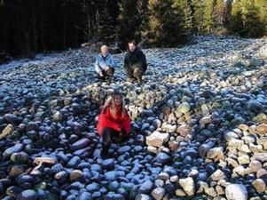 Skogen gömmer mycket historia som Pelle Mattsson, Benjamin Åkermark och Anita Lundgren är med att kartlägga på Tynderö just nu.
