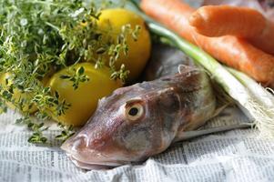 Fula fiskar är finare än somliga tror. Knoten har en skönt kryddig smak och är lätt att laga.