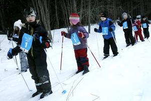 Ordning i ledet när några elever från Ytterharnäs skola åkte Barnens Vasalopp.