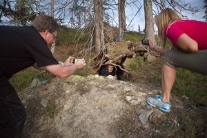 Guiden Roger Bäck har krupit in i björnidet. Björnidet upptäcktes i samband med skogsavverkning för cirka två år sedan. Man tror att där bott en hona med en eller två ungar.