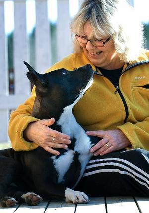 """Änglahund. """"Bodil är en riktig änglahund"""", säger Margareta Johansson."""