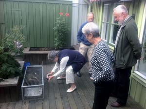 Grannarna kom på besök när de fick höra om fångsten. Från vänster: Siv Näsman, Gunnar Lidfeldt, Solveig Lidfeldt och Sven Nygårds.