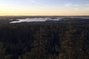 I Milsbo, i Borlänge kommuns sydöstra hörn, ligger Rösåsens utsiktstorn. Härifrån får du en vacker utsikt över södra Dalarna och sjön Runn. Utsiktstornet byggdes år 1935 och är 17 meter högt och alltid öppet. Tar man sig via de 84 trappstegen upp till toppen kan man se ut över 16 kyrksocknar.