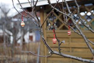 Det märks att de snart är påsk. I kolonin är träd och buskar pyntade med ägg och fjädrar.