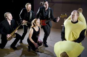 Gråt inga tårar, en existentiell dansbandsmusikal kallar Norrbottensteatern föreställningen som ges i Bollnäs i höst.