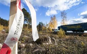 Fler stakkäppar sitter efter varandra längs riksväg 69 mellan Grycksbo och Bergsgården. Foto: Mikael Forslund