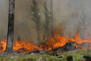 Värmen är tillbaka och markerna har torkat upp efter de åskskurar som kommit. Räddningstjänsten i Ånge befarar nya skogsbränder.