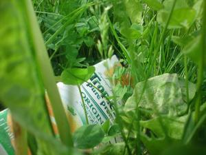 Släng inte skräp i naturen, även om det blir fint på bild. ;)  Tack till dig som lämnade denna i gräset och varsågod, den ligger nu i närmaste soptunna.