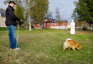 Urban Andersson testar mentaliteten på sin finska spets Leo  på 10 månader, under Jägareförbundets öppna hus i de nya lokalerna ute på gamla F4.   Foto: Ulrika Andersson