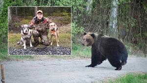 Onsdagens björnmöte är en upplevelse som jägaren Kalle Kastman sent kommer att glömma. Foto: Montage