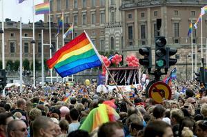 Pridefestivalen har medverkat till ett mer öppet och tillåtande samhälle för homosexuella, menar Anders Selin, ordförande i Hbtq-socialdemokraterna i Sverige. Foto: Gunnar Lundmark/Scanpix