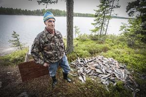 Roland Eriksson, som har fiskestuga i Näverede på södra sidan av Indalsälven, upptäckte den stora högen med gäddor.