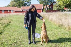 Stefanie Wallén belönar Max med hundgodis.