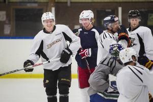 Gävles hockeyelit förebereder sig för ännu en säsong. Här är Jakob Silfverberg, Nicklas Bäckström, Sebastian Lauritzen och Niclas Andersén på isen.