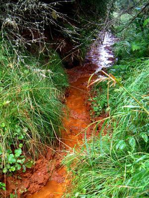 RÖDJORD. Just den här rödjorden från Åmot innehåller bara 10–15 procent järn, men med hårt jobb och tålamod går det att utvinna smidbart järn ur jorden.