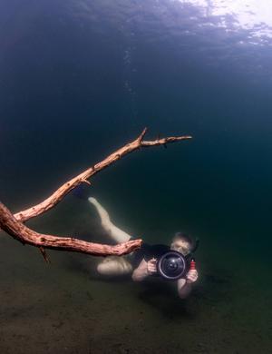 För att få bilder underifrån har fotografen Leif Wikberg sökt sig ner mot bottnen.