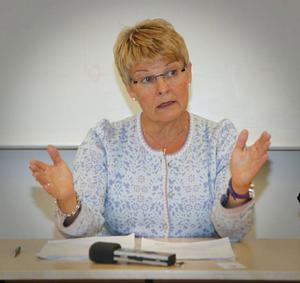 Maud Olofsson, C, kom med ett saftigt vallöfte till inlandet på fredagen. Norrlands inland får två miljarder i form av en riskkapitalfond.