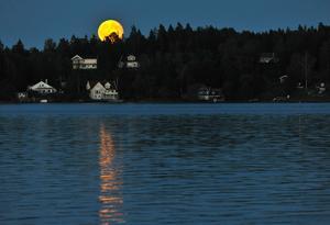 Fredagen den trettonde sent på kvällen uppenbarade sig en majestätisk fullmåne. Nästa gång den kombinationen inträffar är år 2049.