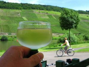 Vinet på ena sidan och floden på den andra. Cykelvägarna följer floden och backarna är lätträknade.