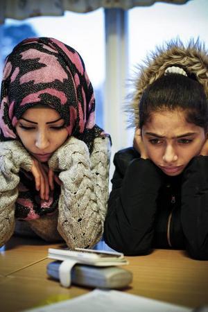 Under mötet används en teletolk, som översätter till arabiska. Foto: Susanne Kvarnlöf