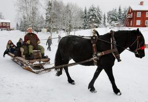 Tea Eriksson, fyra år, tog sig en närmare titt på den fina hästen svettades efter att ha dragit släden