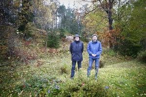 Carl-David Sundstedt och Lars-Örjan Kling står vid kanten mellan deras villatomter (som går vid diket) och den bergskant som sluttar upp mot höghusen i Fornbacken/Fornhöjden.