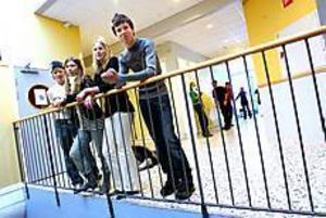 Johan Ericsson, Denise Fa Brinkehag, Kristina Ericsson och Marcus Svensson går i nian på Milboskolan i Hille. Senast den andra februari måste de ha valt vad de vill gå för program på gymnasiet - ett beslut som inte är helt lätt. Foto: ANNAKARIN BJÖRNSTRÖM