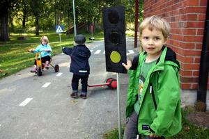 Grönt och klart att köra! Max Ekefalk var trafikvakt under kamraternas cykeltur.