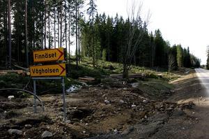 Avverkningsplats. Skogen mellan skjutbanan och upp mot Lyviksberget avverkas i etapper. Frågan är om de bullervallar som kommunen anlägger vid skjutbanan kommer att dämpa ljudet så mycket att närboende inte blir störda av skyttarnas aktiviteter.