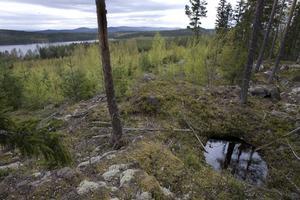 Långmyrsjön skymtar från Gruvberget. Nivån i sjön kan sjunka så mycket som två meter tror kommunens handläggare.Arkivbild: Lars Sundin
