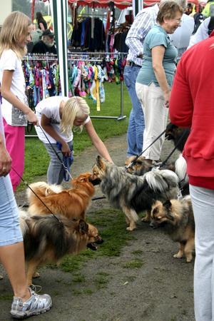 Gemenskap. Både ägare och hundarna får tid till att hälsa på varandra under de båda utställningsdagarna.