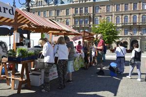 En del folk var där och köpte lokala produkter.