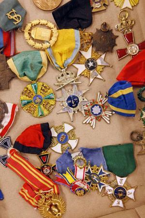 Det fanns mycket märkliga och udda varor till salu vid söndagens auktion i Oviken. Mynt, medaljer, ordnar
