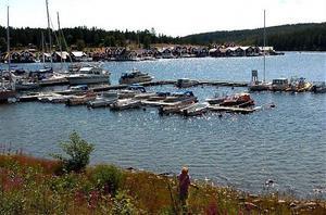 Vid Norrfällsviken vill kommunen att det röjs för de vackra vyerna och turisterna.