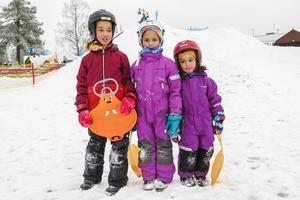 När Vinterparken öppnade på lördagen var tre av besökarna systrarna Kemling: Adelia, Leila och Lova.