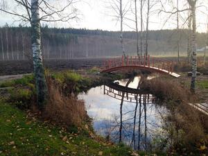 Björn Colliander har låtit anlägga en damm på gården, och över den har han byggt en japansk bro.