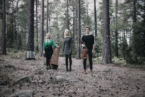 Folk'Avant består av Maija Kauhanen (kantele, sång), Anna Wikenius (sång) och Anna Rubinsztein (fiol, sång).