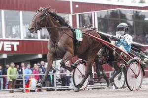 Touch Of Elegance vann V64-1, strax före Hagmyrenhästen 2015 Diamondinthesky.
