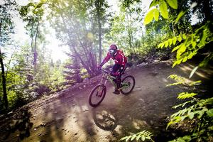 Kommunalrådets studieresa till Skottland handlade om att lära sig av deras satsningar inom cykelnäringen.