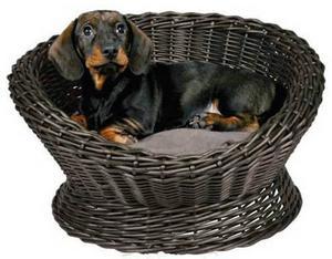 Soffa till hunden i kaffebrun pil med matchande sittdyna. Funkar lika bra ute på verandan om sommaren som inomhus. Finns hos djurbiten.com och kostar 629 kronor.