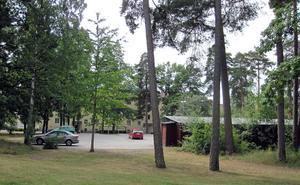 Mellan husen på södra Skallberget finns mycket träd och grönska.  De boende vill ha grönytorna kvar.