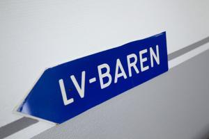 LV-baren klarade sig inte längre efter Ericssons nedläggning.