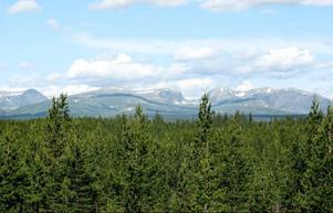 På väg till Storsjö passade Gösta på att fotografera den fina utsikten över Ljungdalsfjällen.