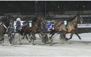 Kajsa Frick hade en bra kväll på travbanan i romme. Här med amatörhästen Fagerö. Foto: micke gustafsson/foto-mike