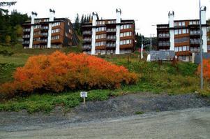 Det mesta av nyproduktionen i Åre på 2000-talet har varit lyxiga borätter, som sålts för Stockholmspriser. Skyline Åre var med och ledde vägen.