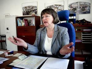 - Jag känner att kritiken inte handlar om mig som person, säger Härnösands nya kommunchef Lillemor Lindgren.