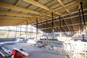 Den nya lösdriftsladugården blir på totalt drygt 900 kvadratmeter.