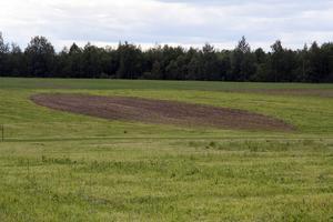 Oändlig energi är en jordcirkel i träda i Landskapsparken på Wij trädgårdar.