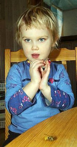 Foto: NICK BLACKMON Februarigeting. Treåriga Wilma vaknade av att ha blivit stucken på halsen av  en geting.