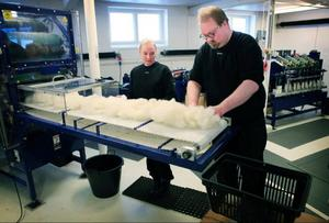 Erika Danielsson och Henrik Norberg sköter maskinerna på minispinneriet i Ås.